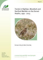 Liley Fearnley 2014 - Trends in Nightjar - Woodlark and Dartford Warbler on the Dorset Heaths 1991-2013